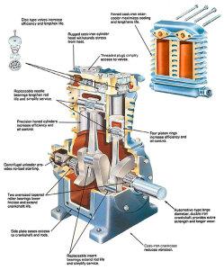 pumps-cutaway
